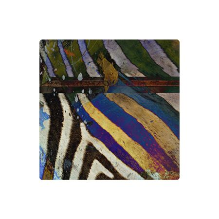 Sebra Stripe - Metal Wall Art