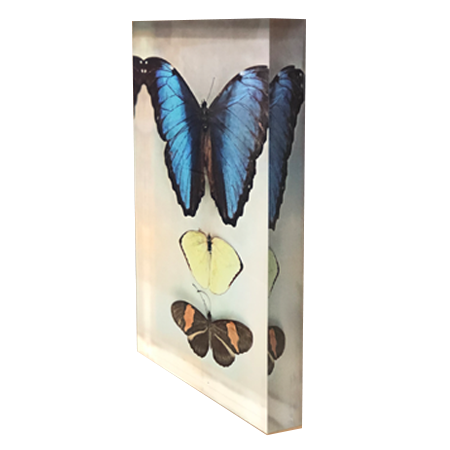 Acrylic Art Block - Blue Butterfly